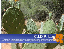 My CIDP Chronic Inflammatory Demyelinating Polyneuropathy: Symptoms